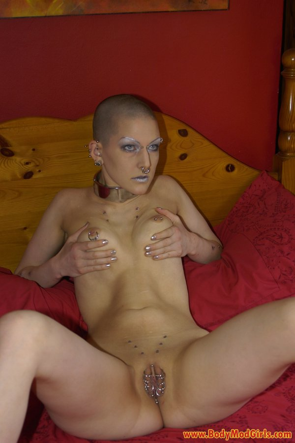 Лысые пизды в порно — pic 14